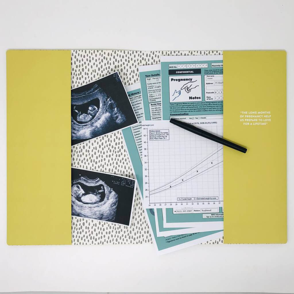 original_pregnancy-journal-and-planner (1)