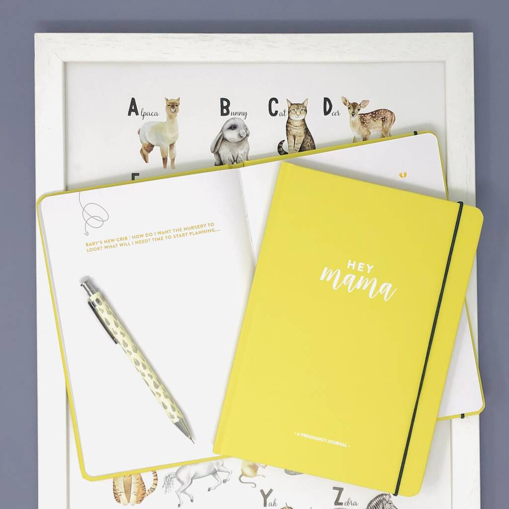 Pregnancy Journal And Planner